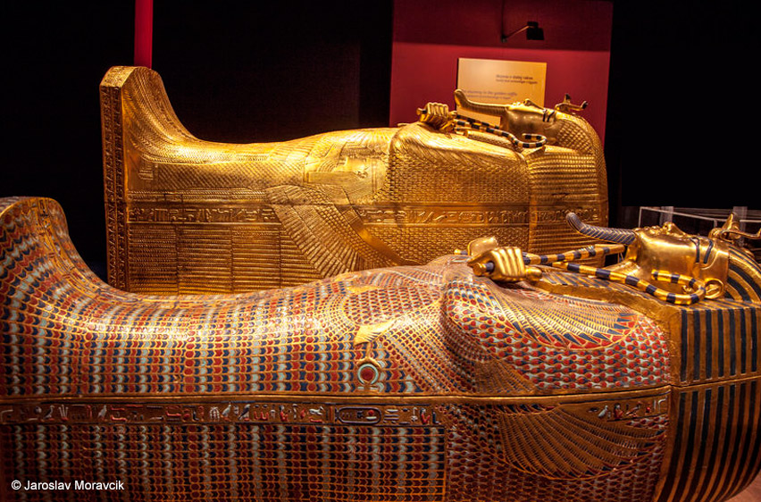the murder of king tut A 'virtual autopsy' of king tutankhamun has revealed that he is unlikely to have died in a chariot crash, as has previously been suggested, because he suffered from serious genetic physical .